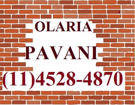 OLARIA PAVANI LTDA