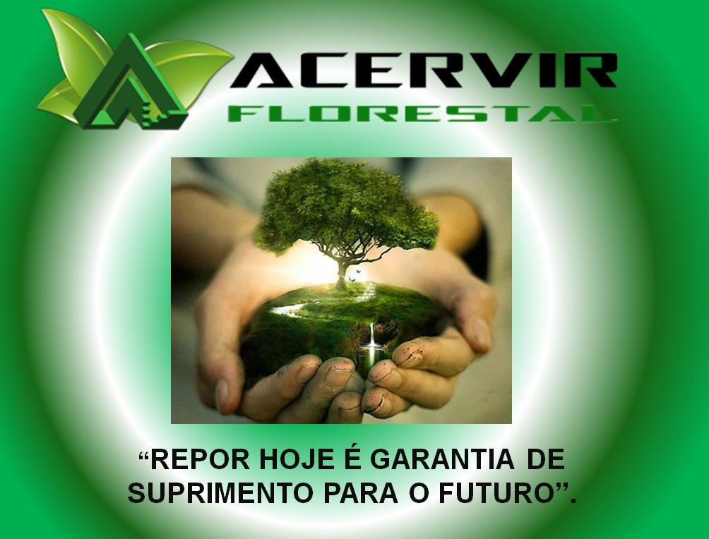 A ACERVIR FLORESTAL REALIZA A REPOSIÇÃO FLORESTAL PARA CONSUMIDORES DE INSUMOS DE MADEIRA E DERIVADOS!